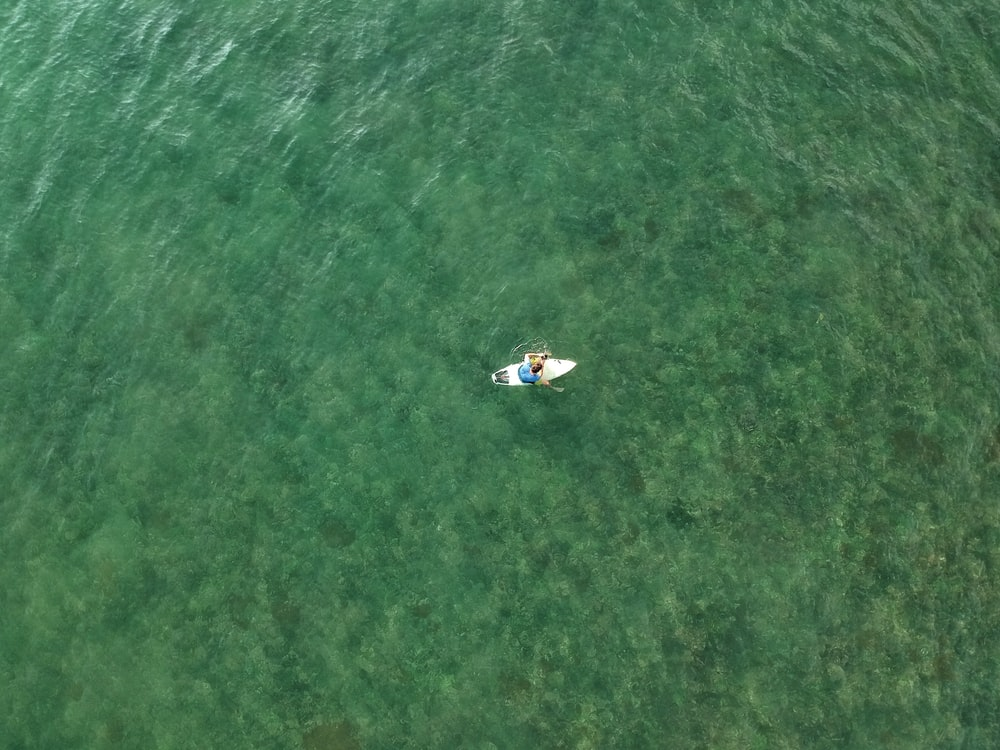 aerial photography of person on white paddle board