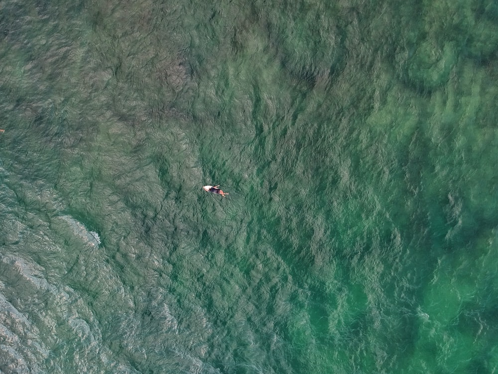 top-view photo of person on top of surfboard on body of water