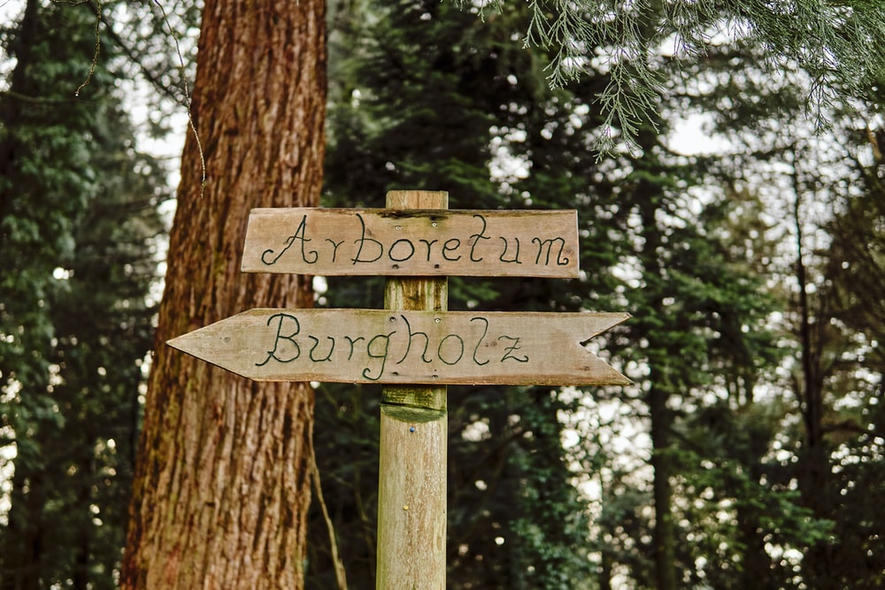 Arboretum and Burgholz wooden sign in forest