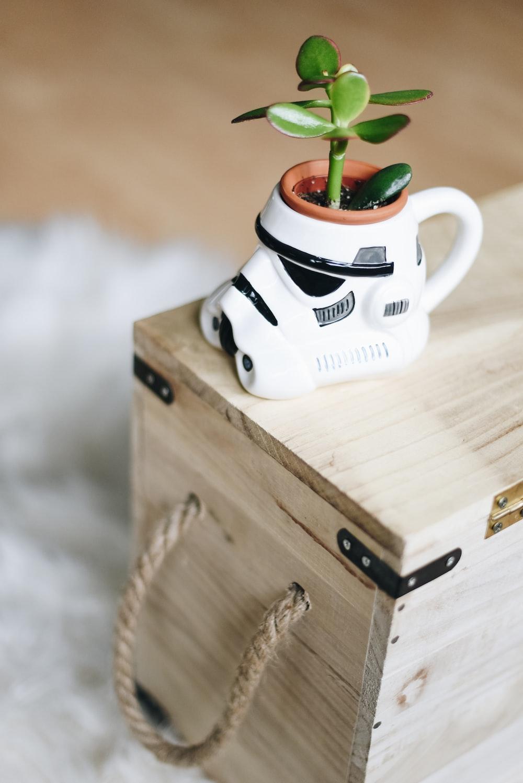 green plant in stormtrooper pot