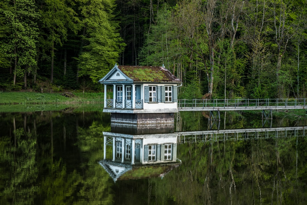 white and green house on top of water