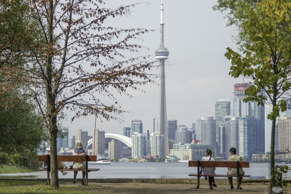 four people sits on park benches across city scape