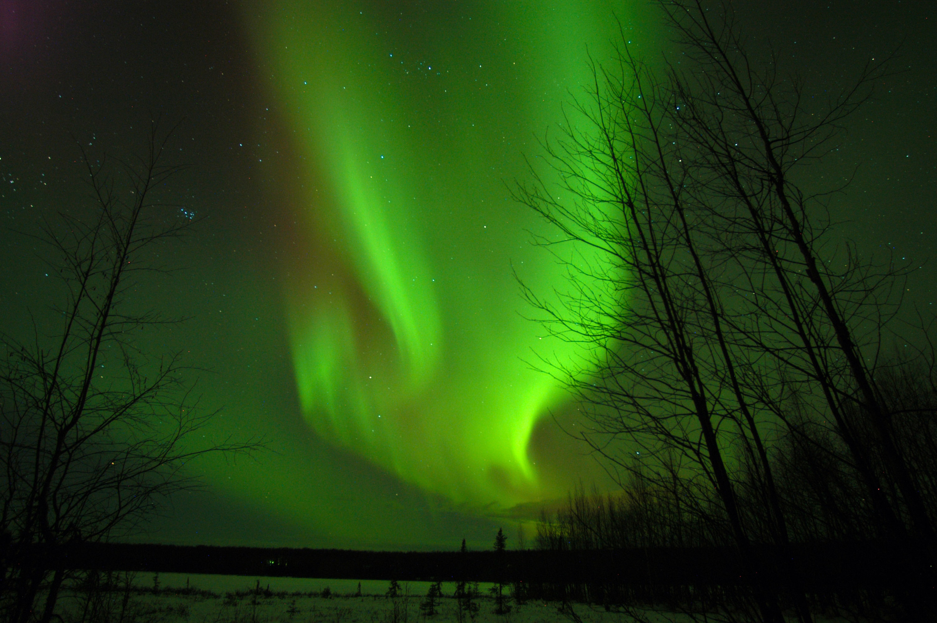 green and brown Northern light above body of water