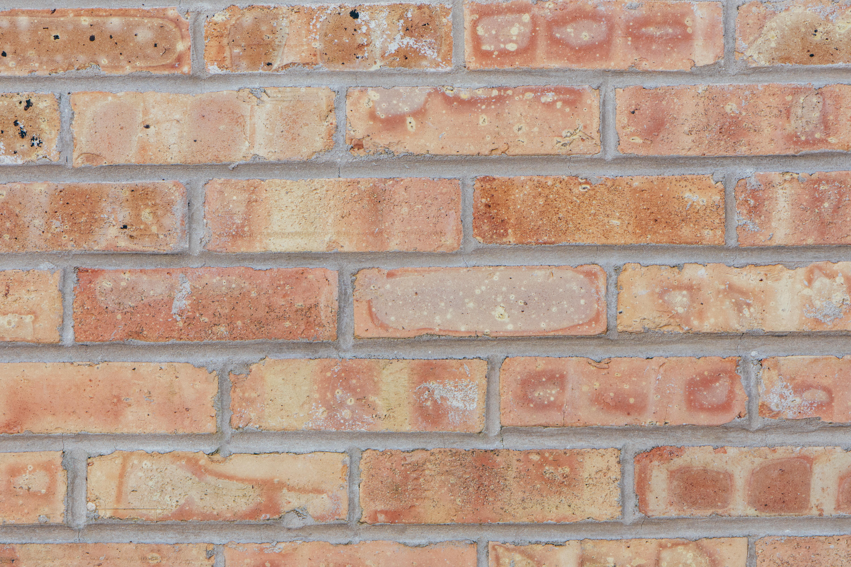 close-up photo of brown brick wall