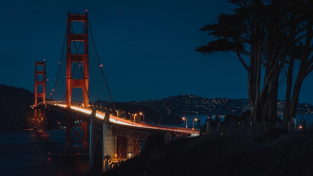 brown bridge near tree at nighttime