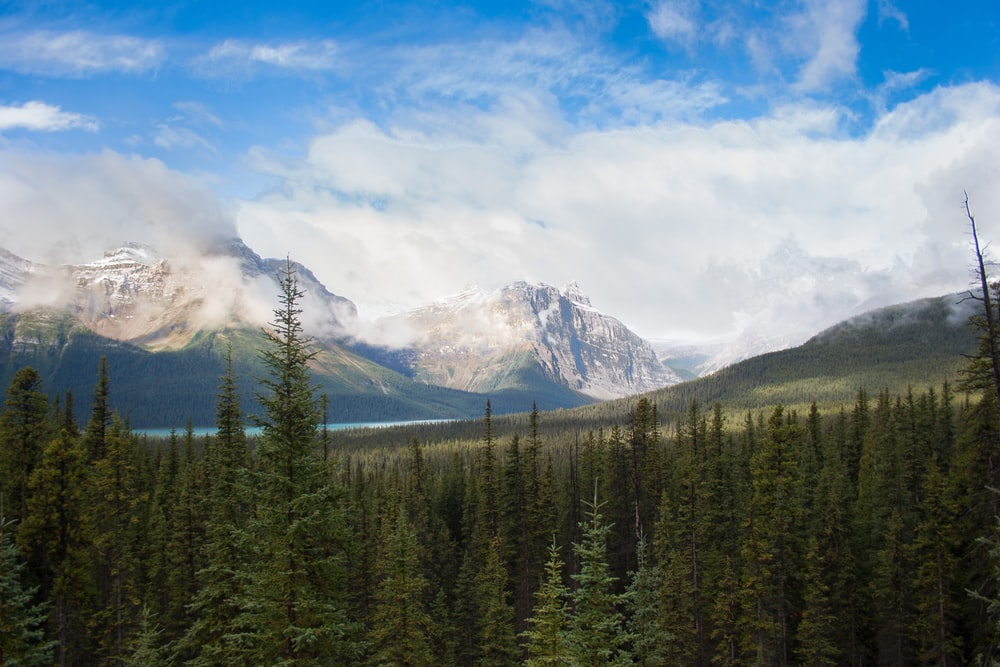 landscape photo of snow-capped mountain near river