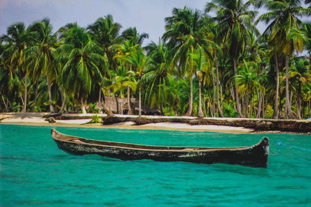 black canoe on body of water