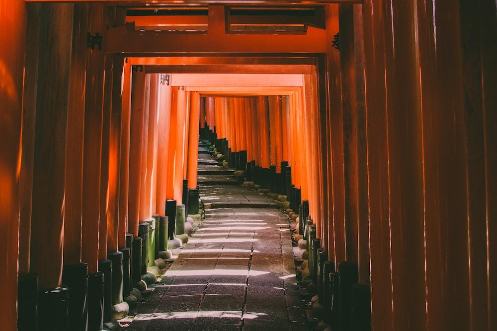 Kyoto Japan tori gate path leading to temple