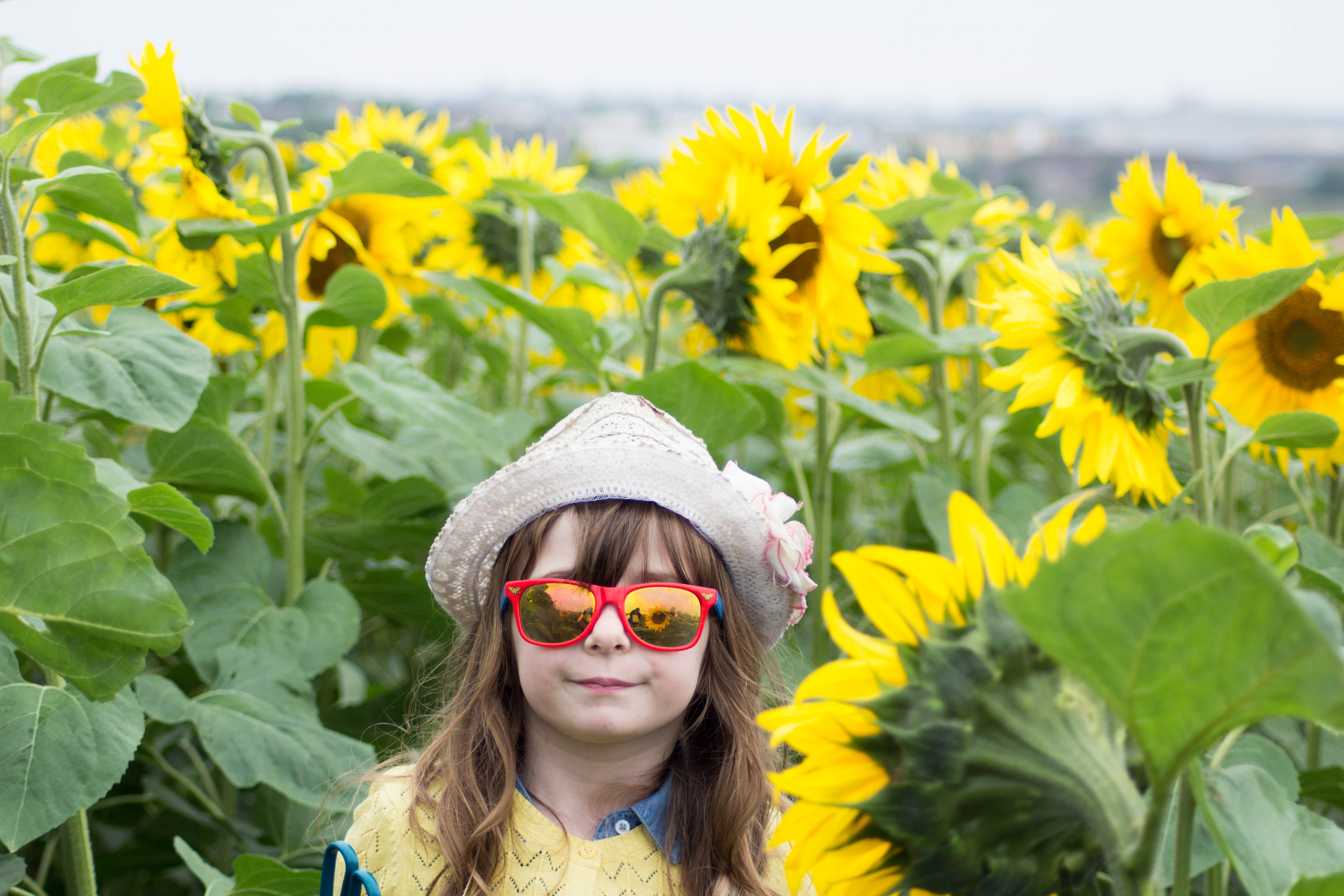 girl wearing red framed sunglasses and white hat surrounded by yellow sunflowers during daytime