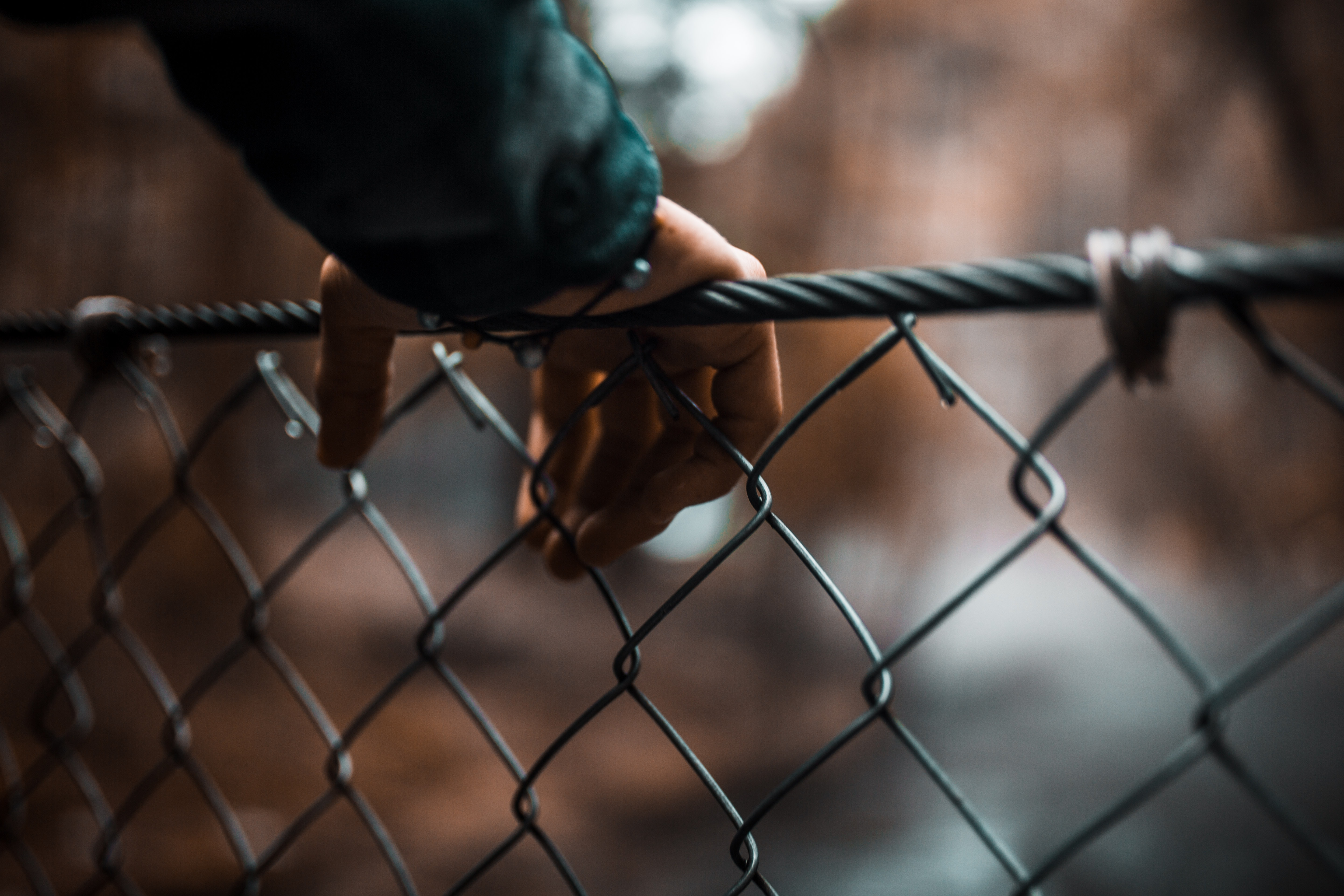 selective focus photography of person holding mesh fence