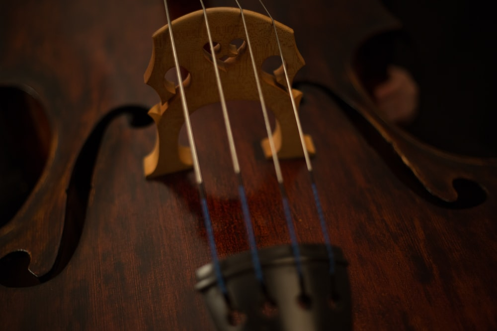 focus photography of brown and black string instrument