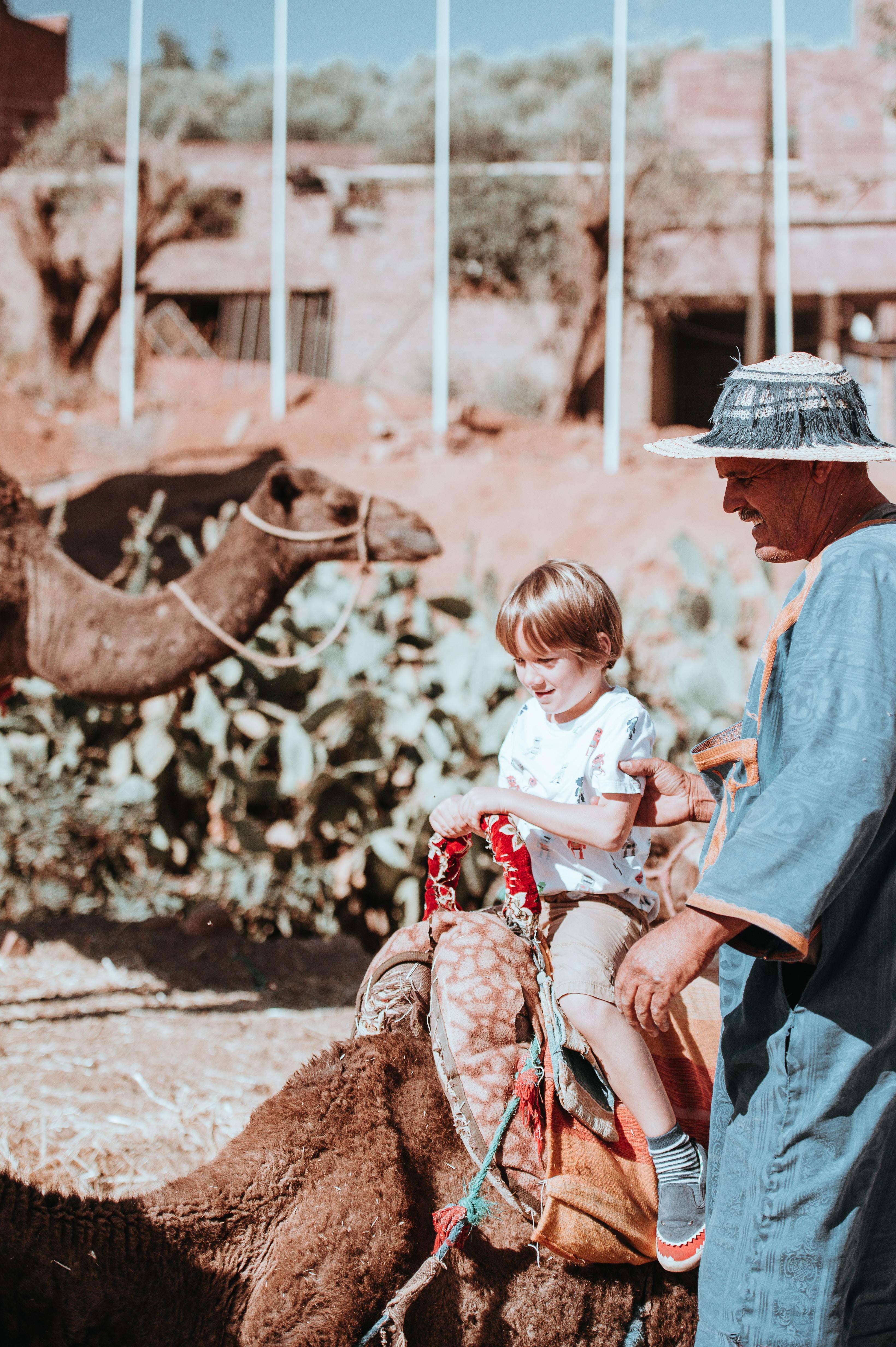 kid riding on brown camel beside man wearing green coat at daytime