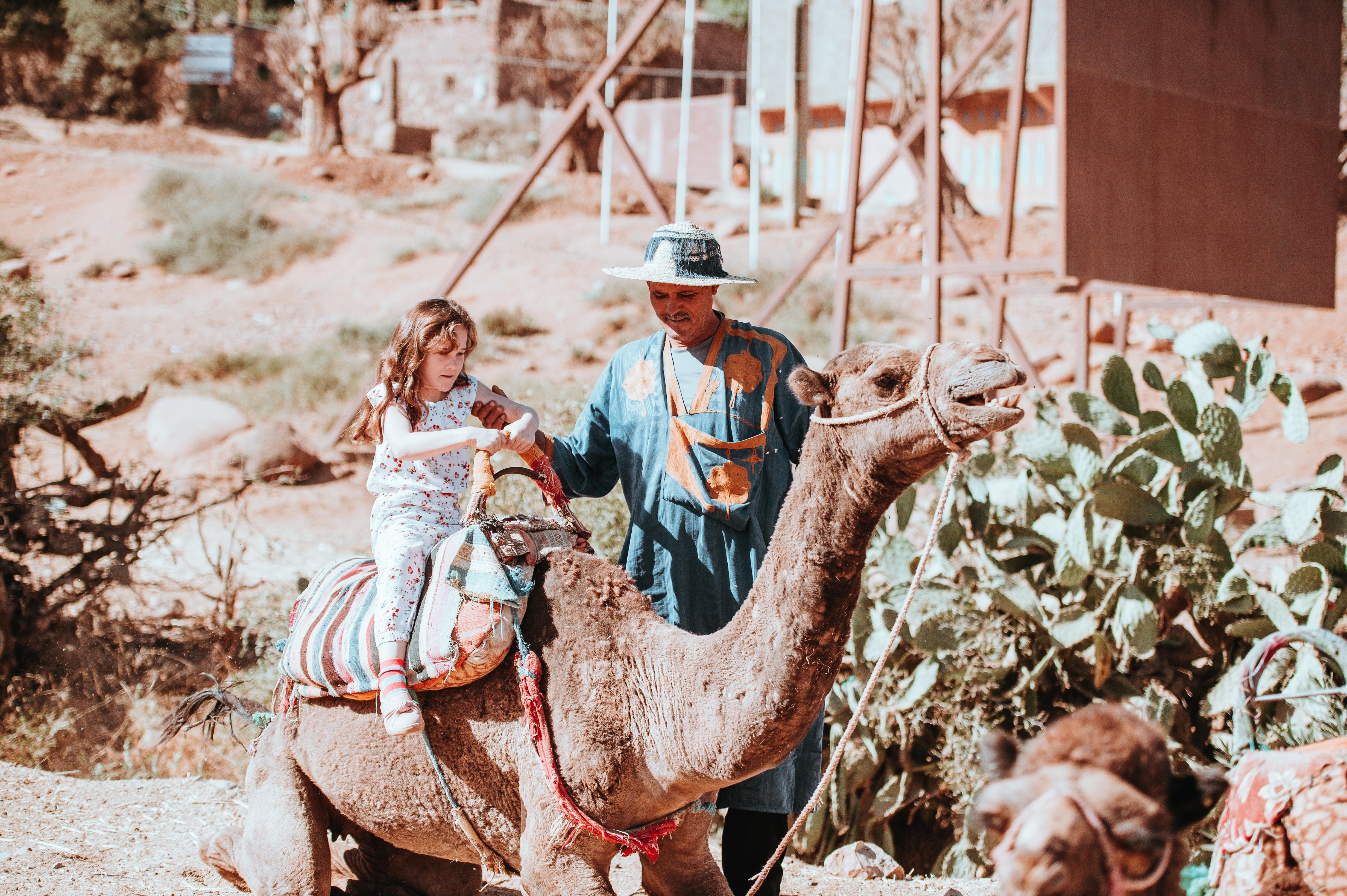 girl riding on brown camel during daytime