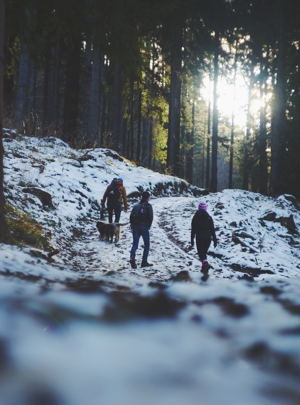 three person walking on snow covered mountain during daytime