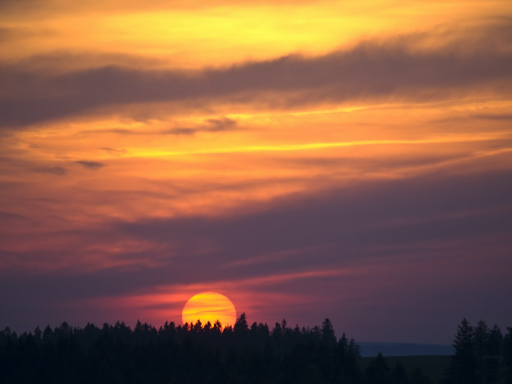 sunset over forest silhouette