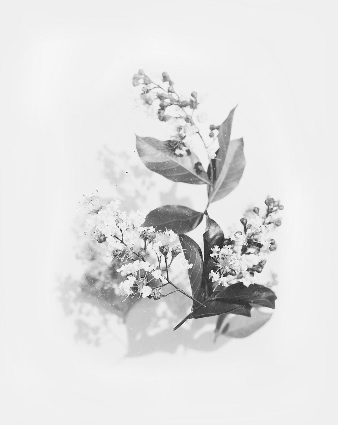 3944. Virágok