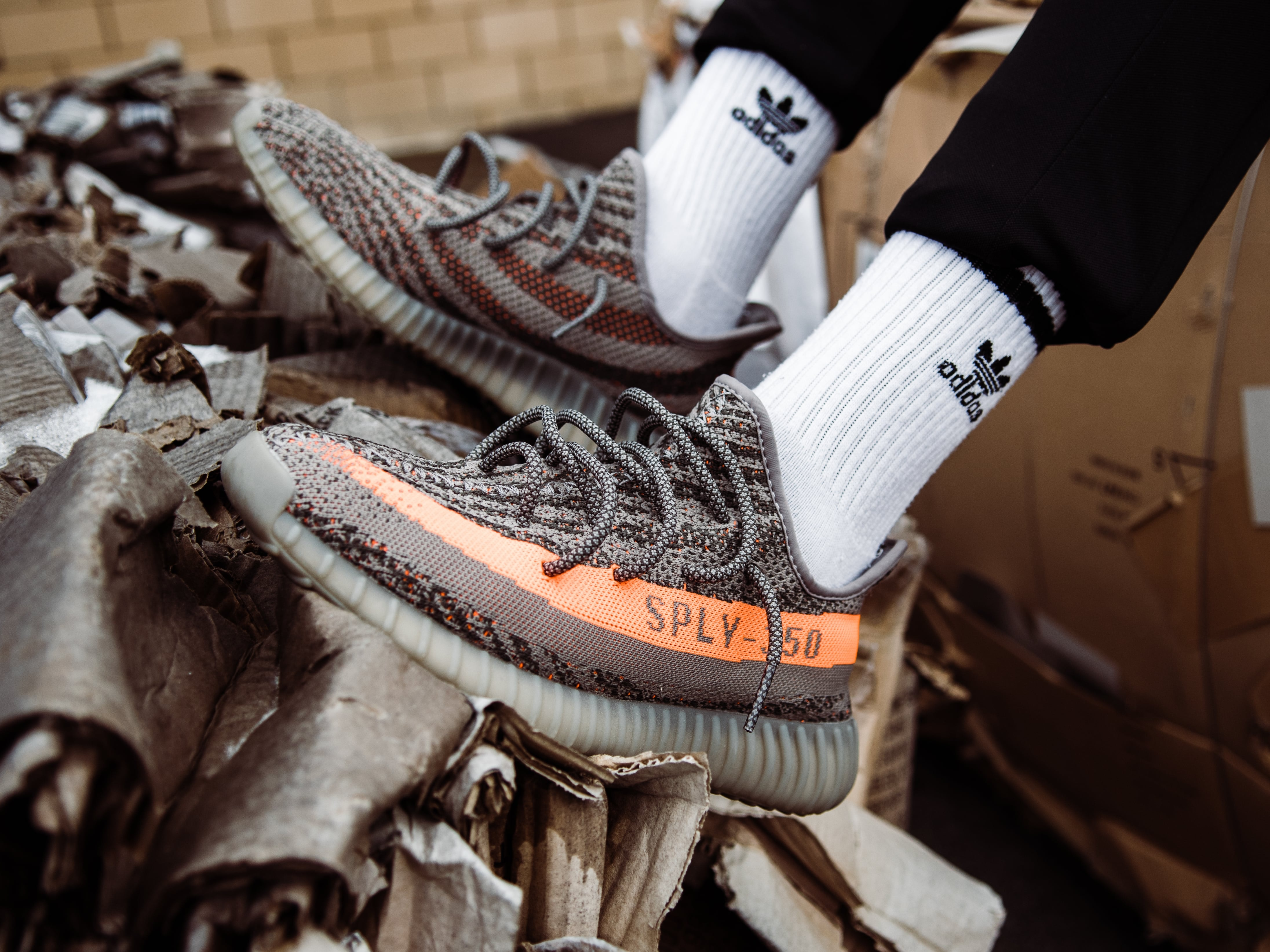 person wearing beluga adidas Yeezy Boost 350 V2 shoes
