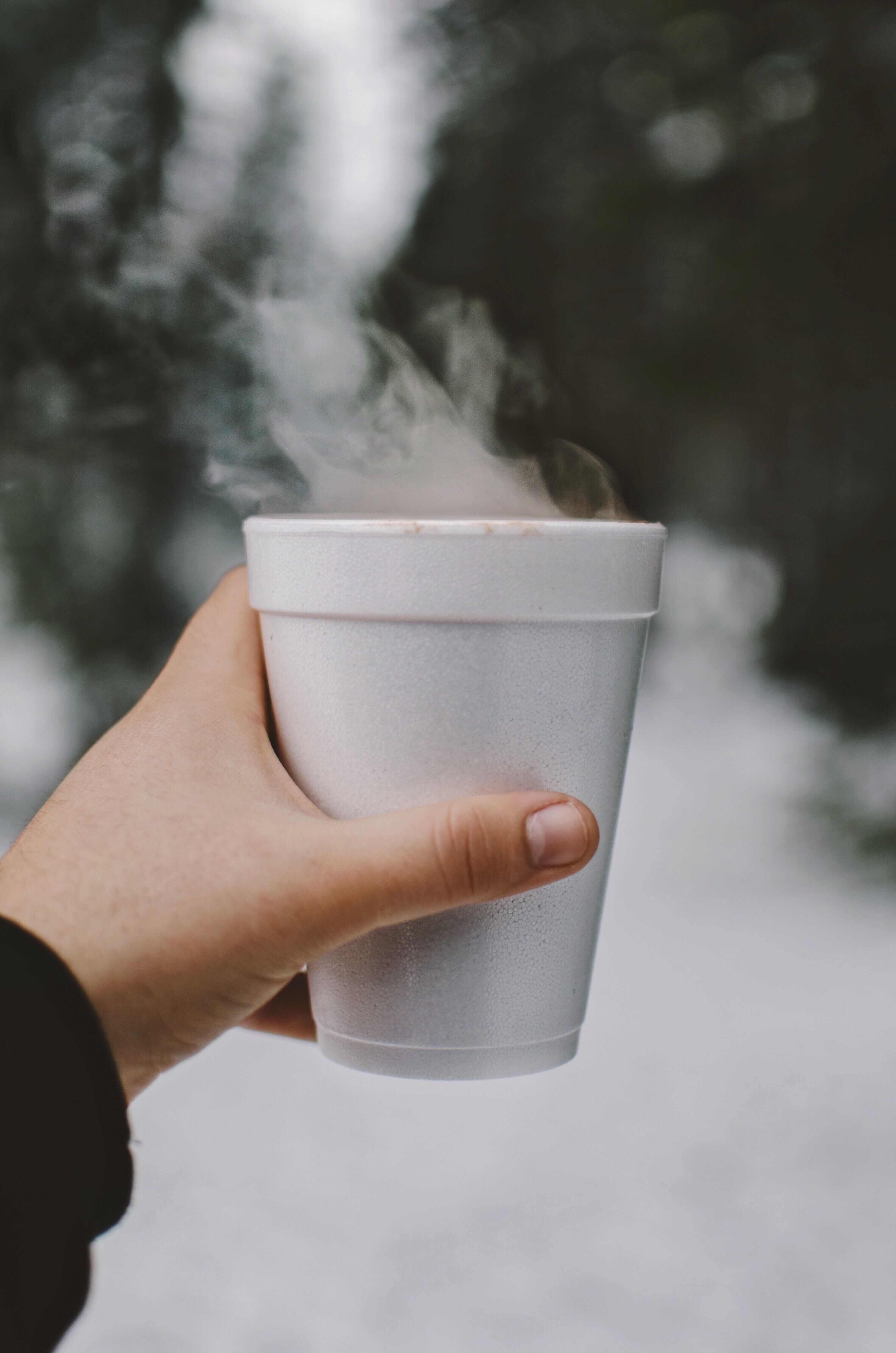 person holding white styro cup
