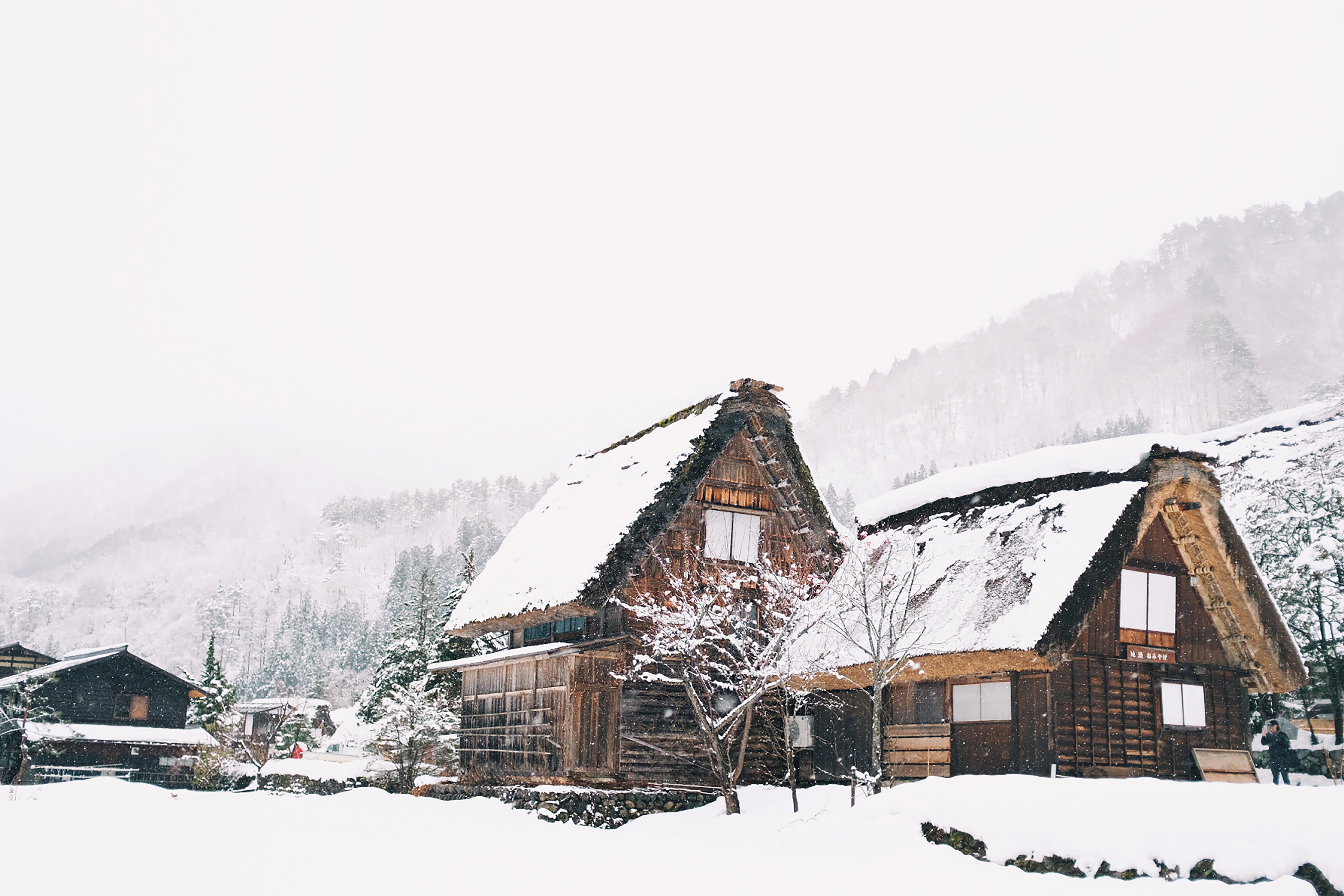 wooden house cover with snow
