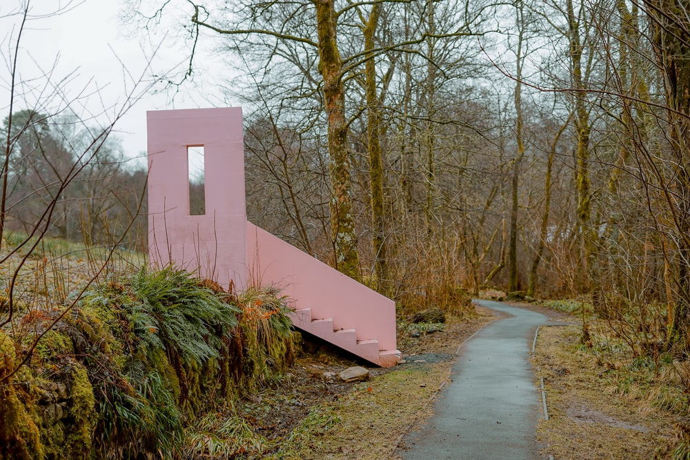 pink painted stairs in forest
