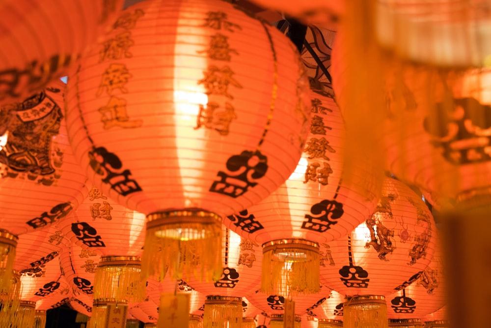 macro shot photography of paper lantern