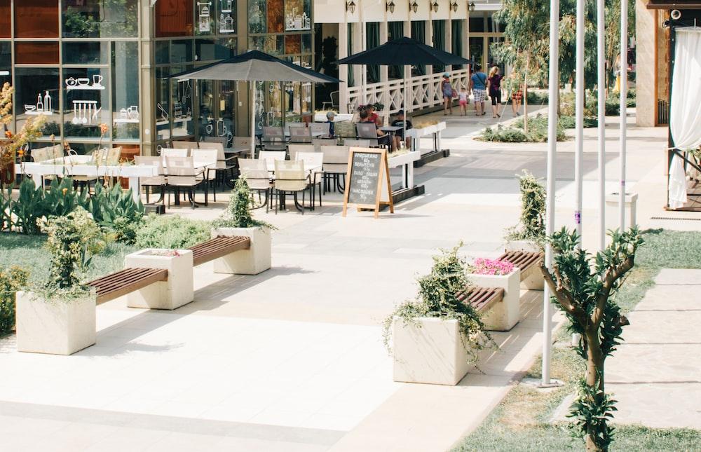 landscape photography of bench on park
