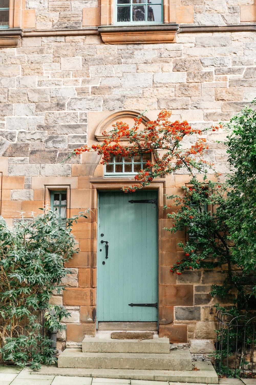 blue wooden door beside green plants