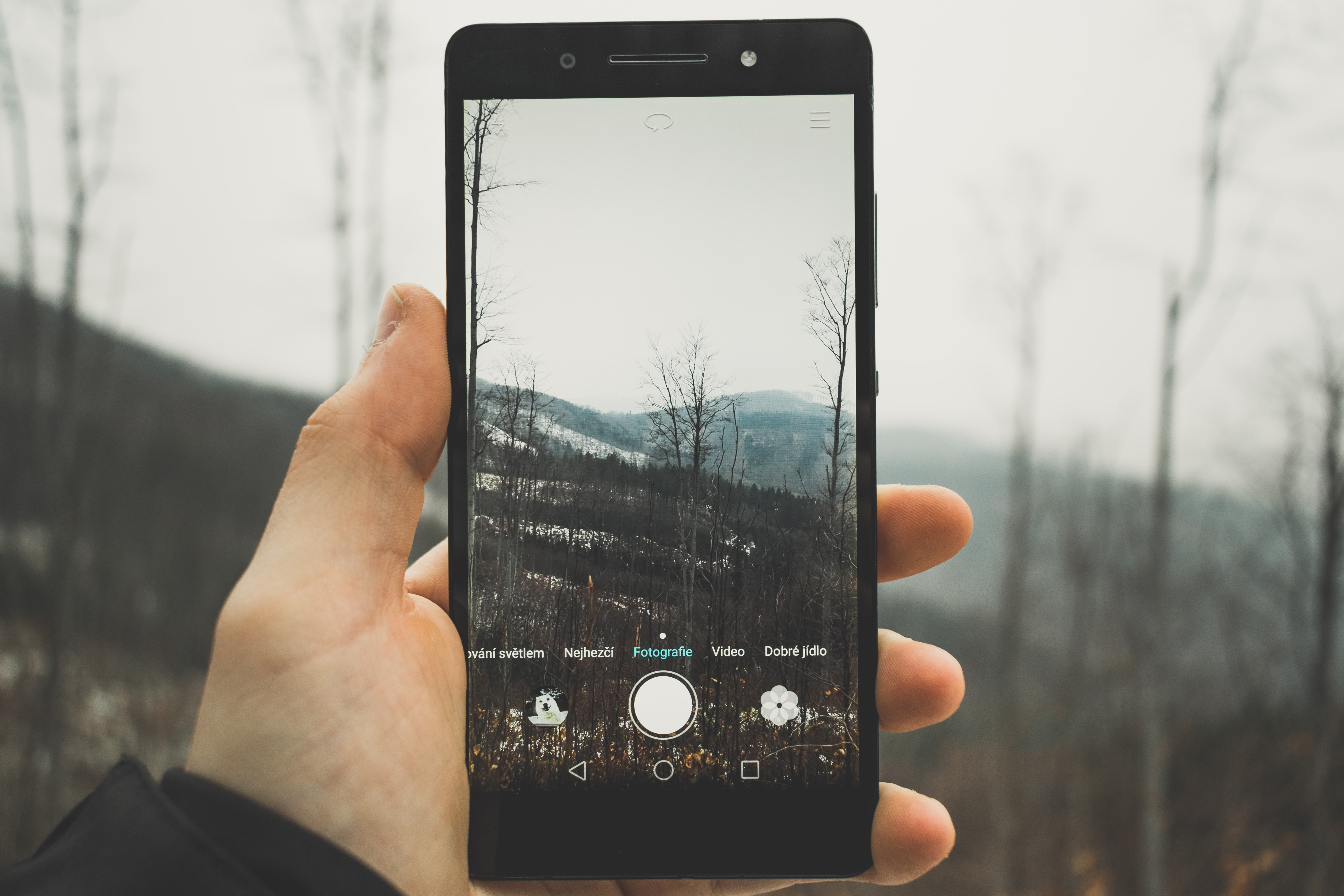 person holding black Android smartphone taking picture to bare trees