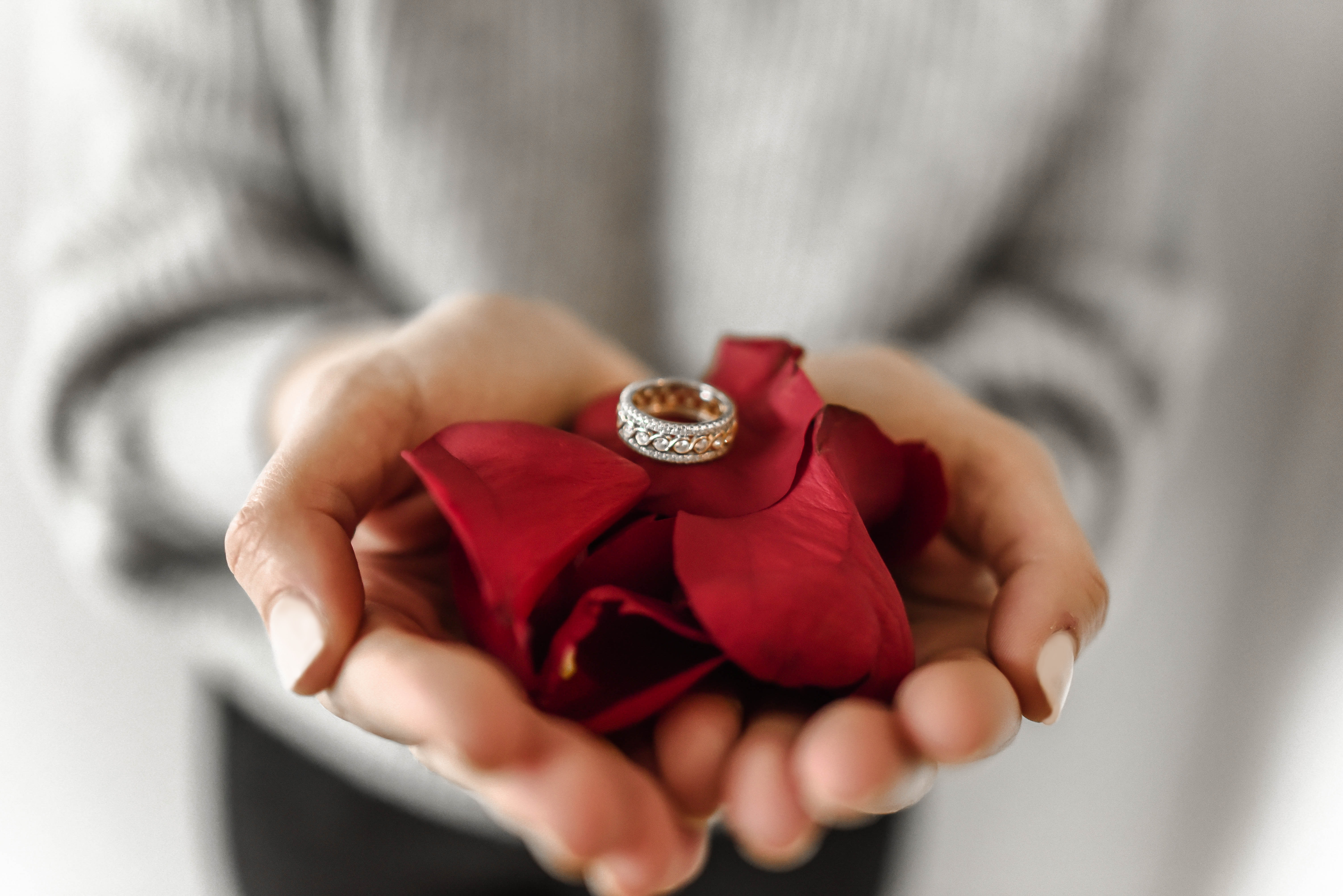 person holding red petaled flower and silver-colored ring