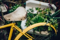 closeup photography of yellow bicycle beside green plants