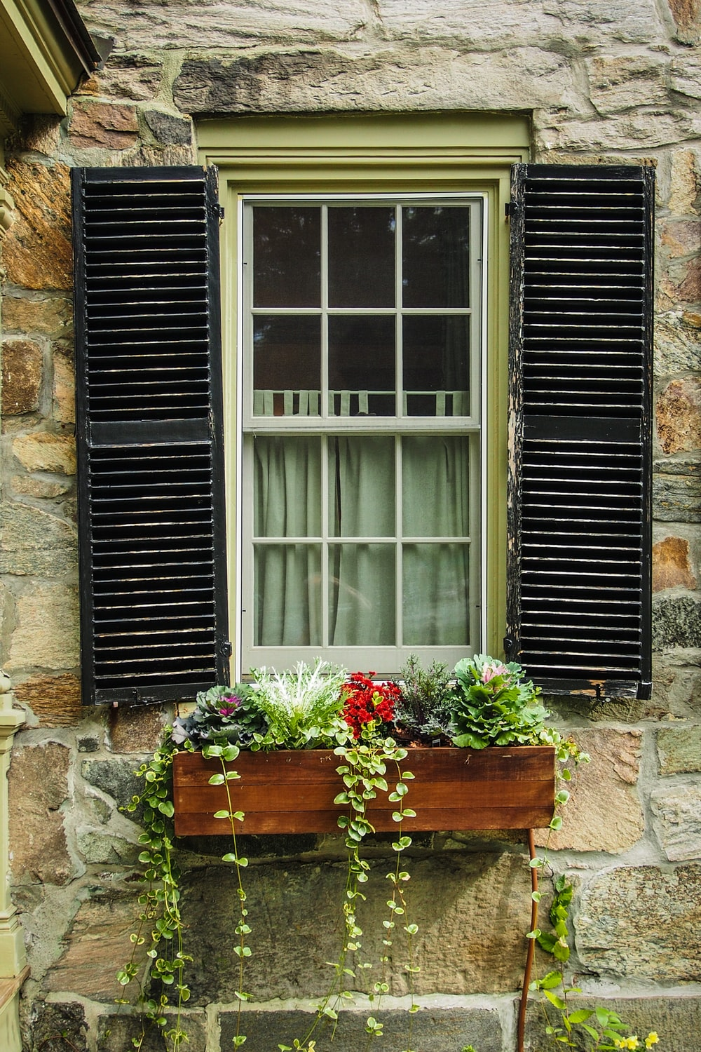 photo of window opened with red and pink petaled flowers decor