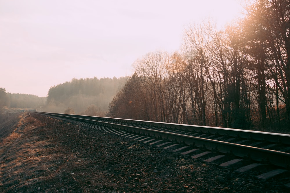 landscape photography of train rail surrounded with trees