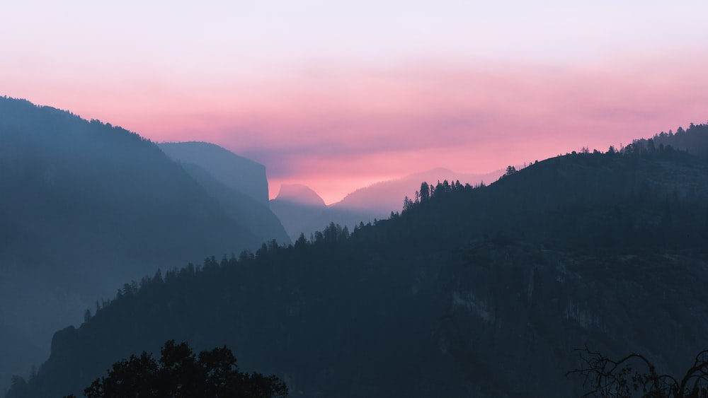 forest mountain during sunset