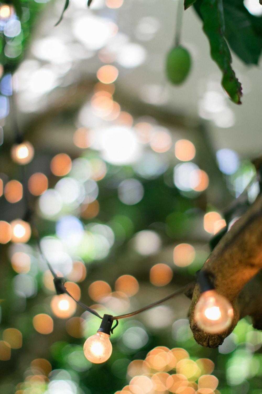 tilt shift lens photography of LED bulb