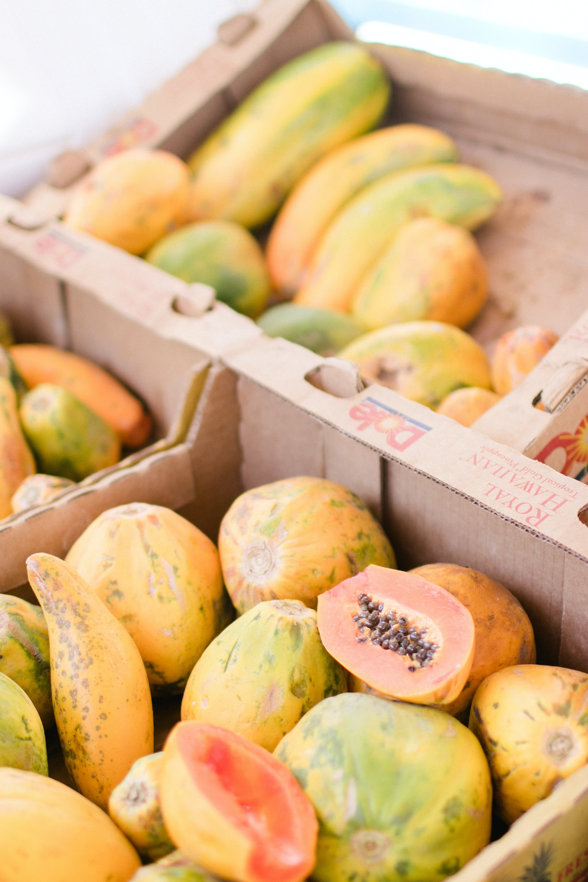 papaya fruits in boxes