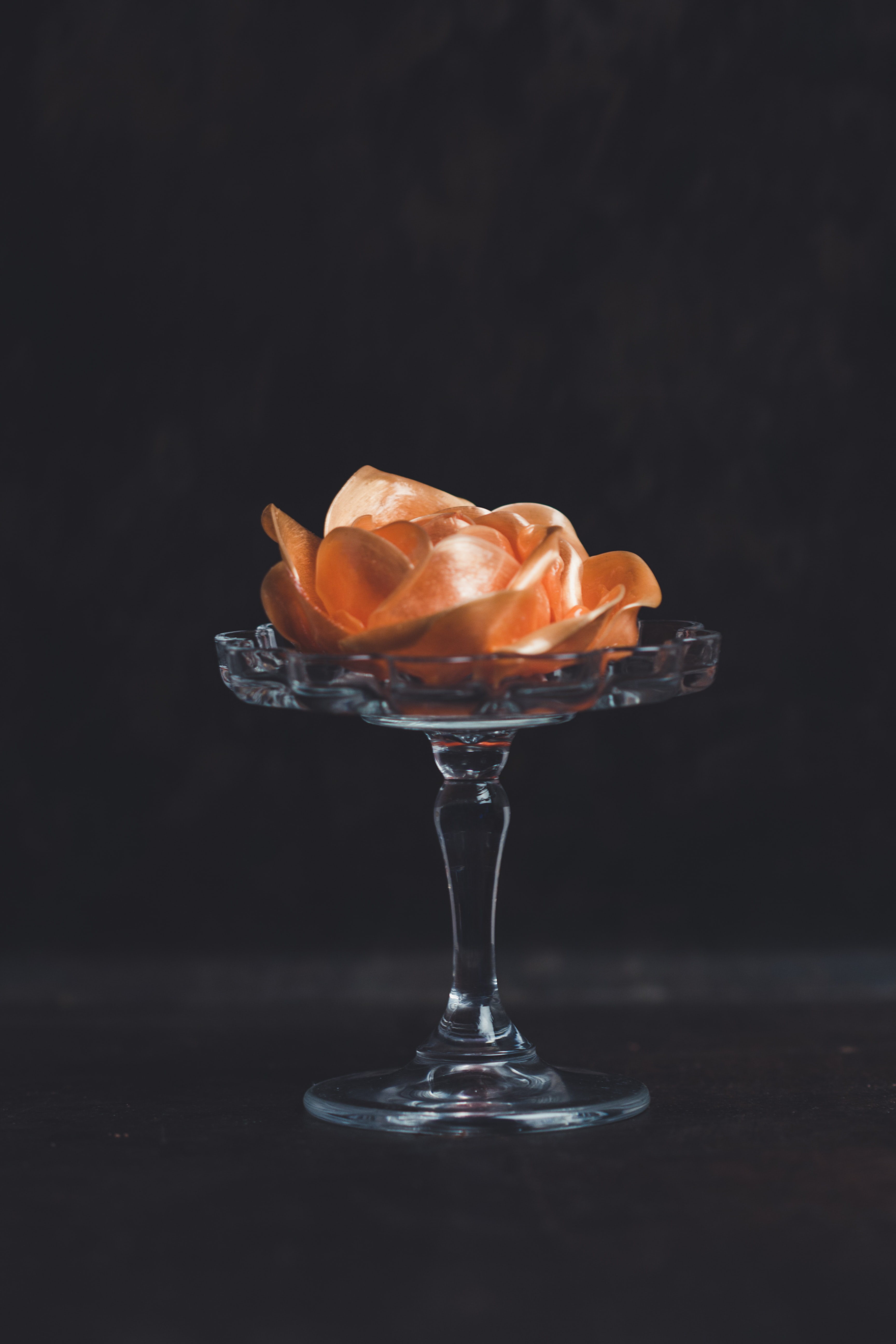 orange flower on glass footed vase against black background