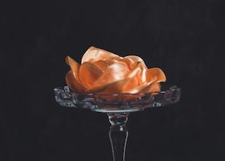 orange flower on glass footed vase against black background