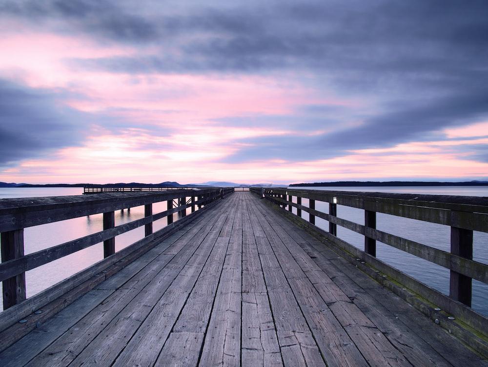 brown wooden dock facing horizone
