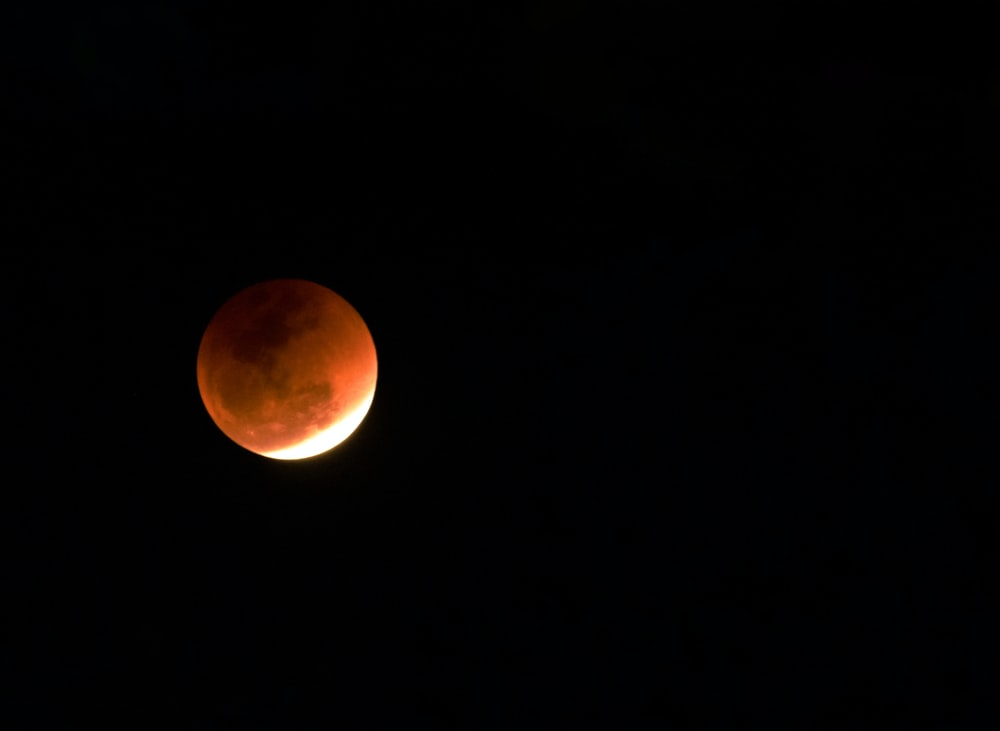 photo of blood moon during night time