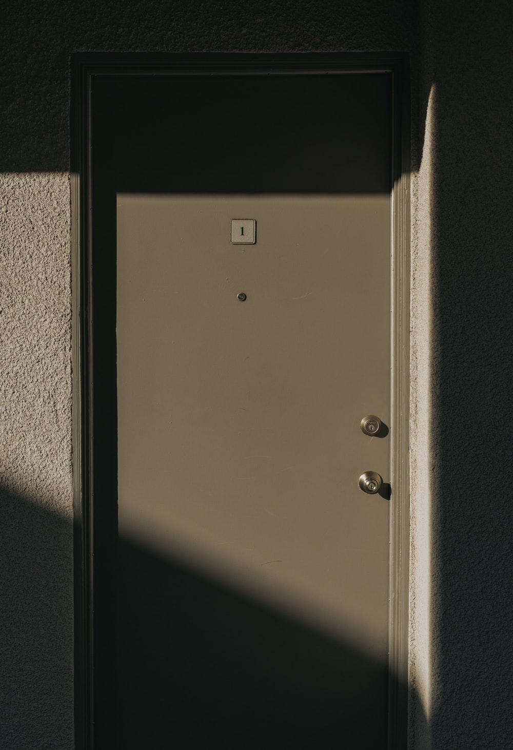 closed gray wooden door