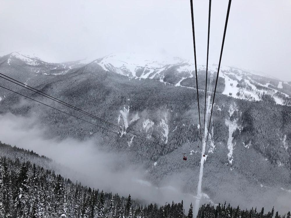macro shot of mountain