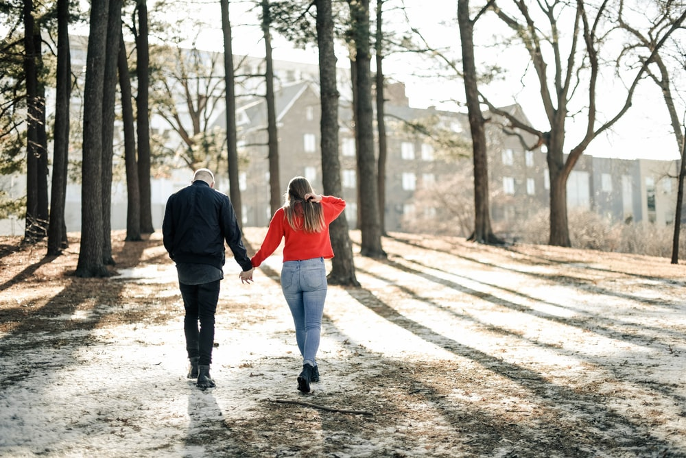 couple holding hands while walking near brown trees during daytime