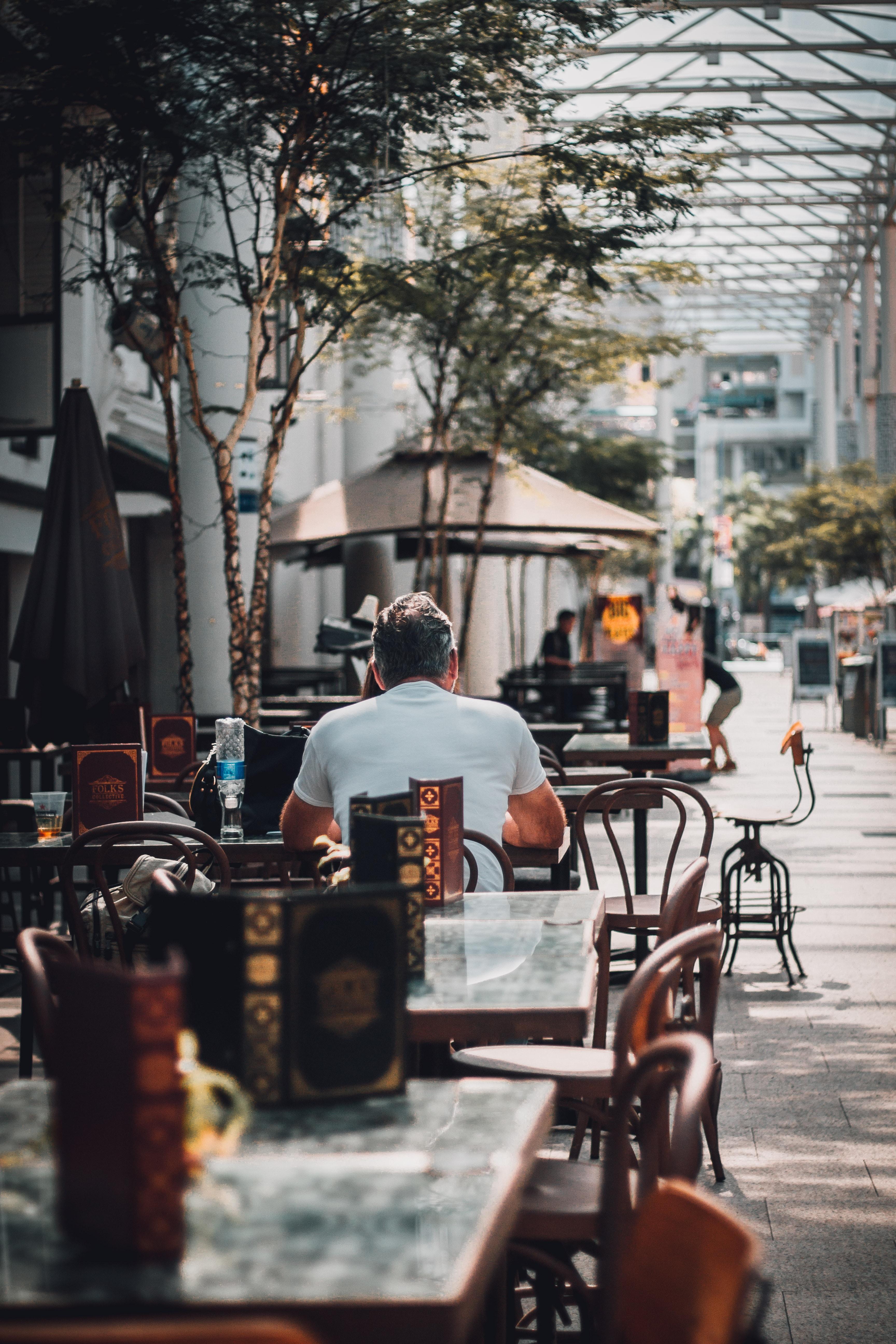 man sitting on chair near tree