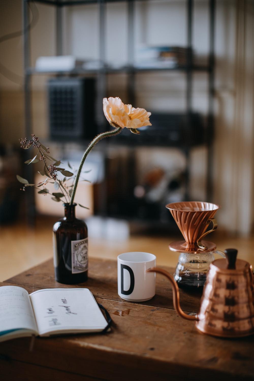 orange petaled flower on vase