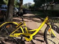 step-through frame bike near tree