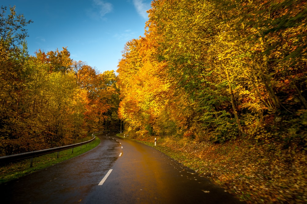landscape photo of road
