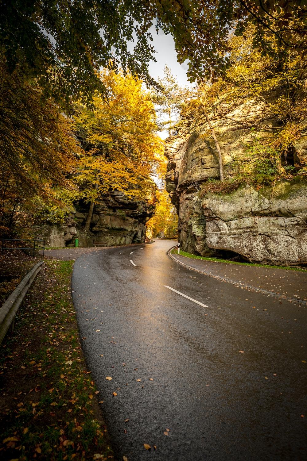 curved pathway near cliffs