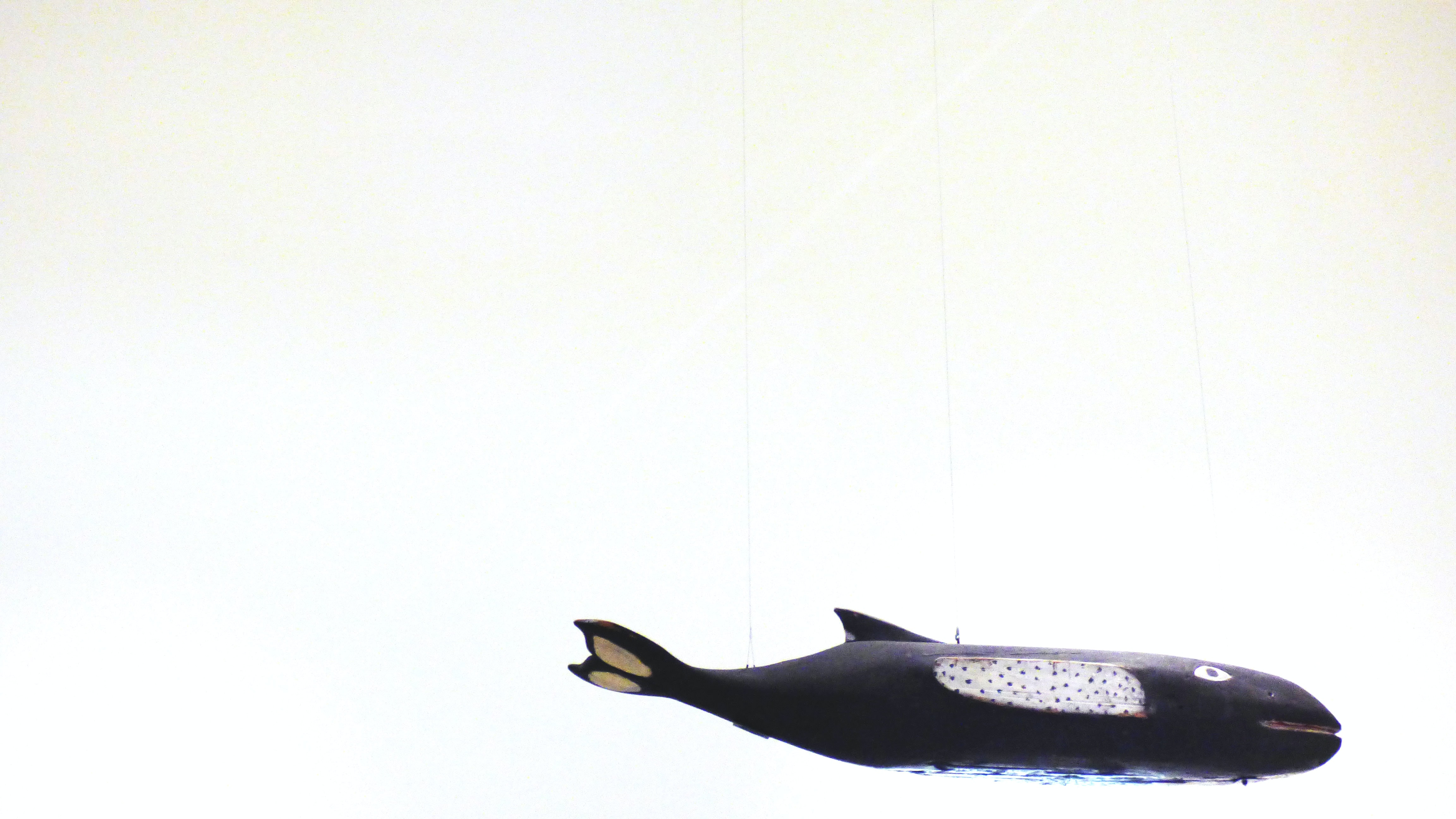 photo of black whale toy