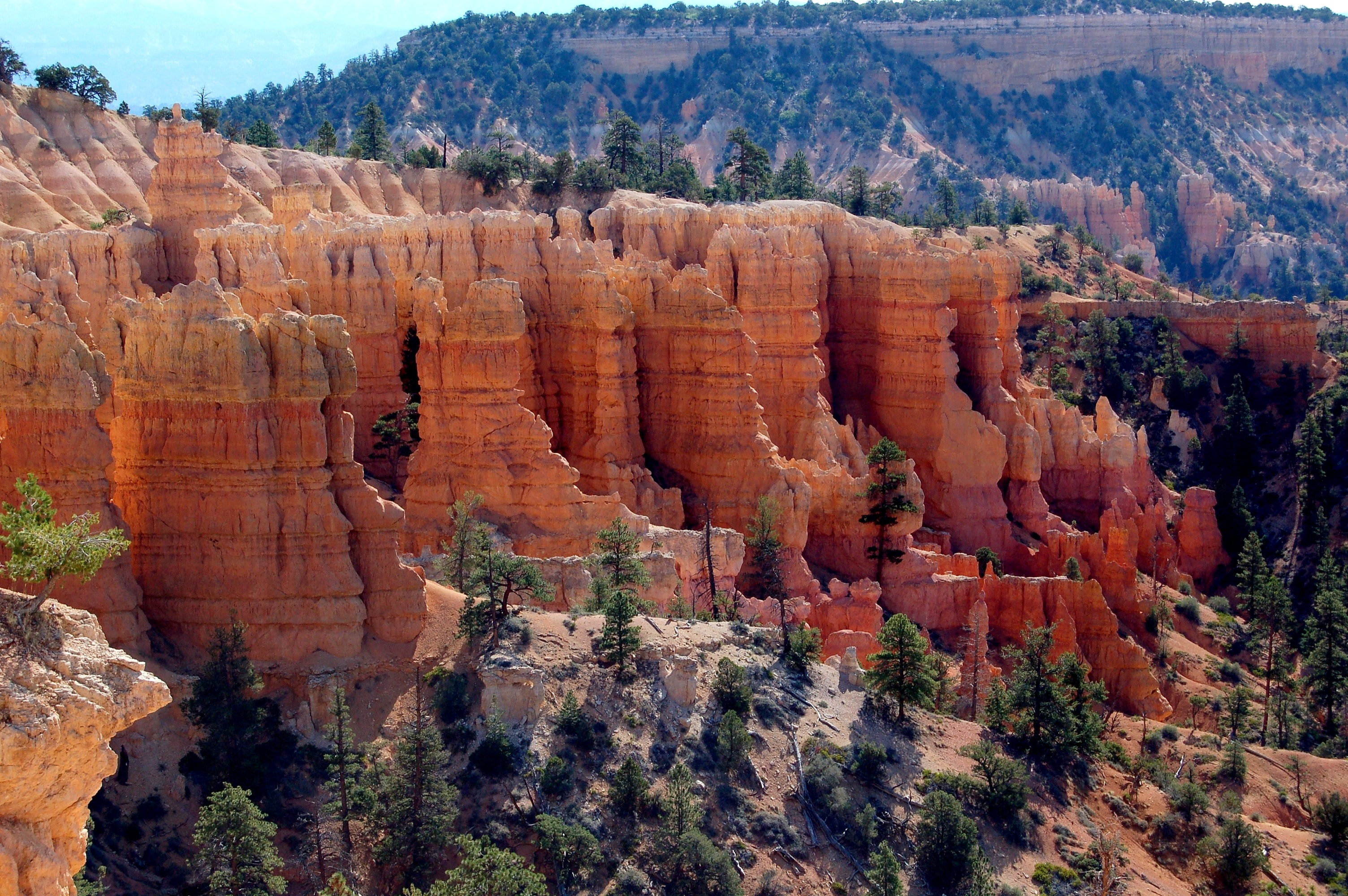 rock formations near green leafed trees