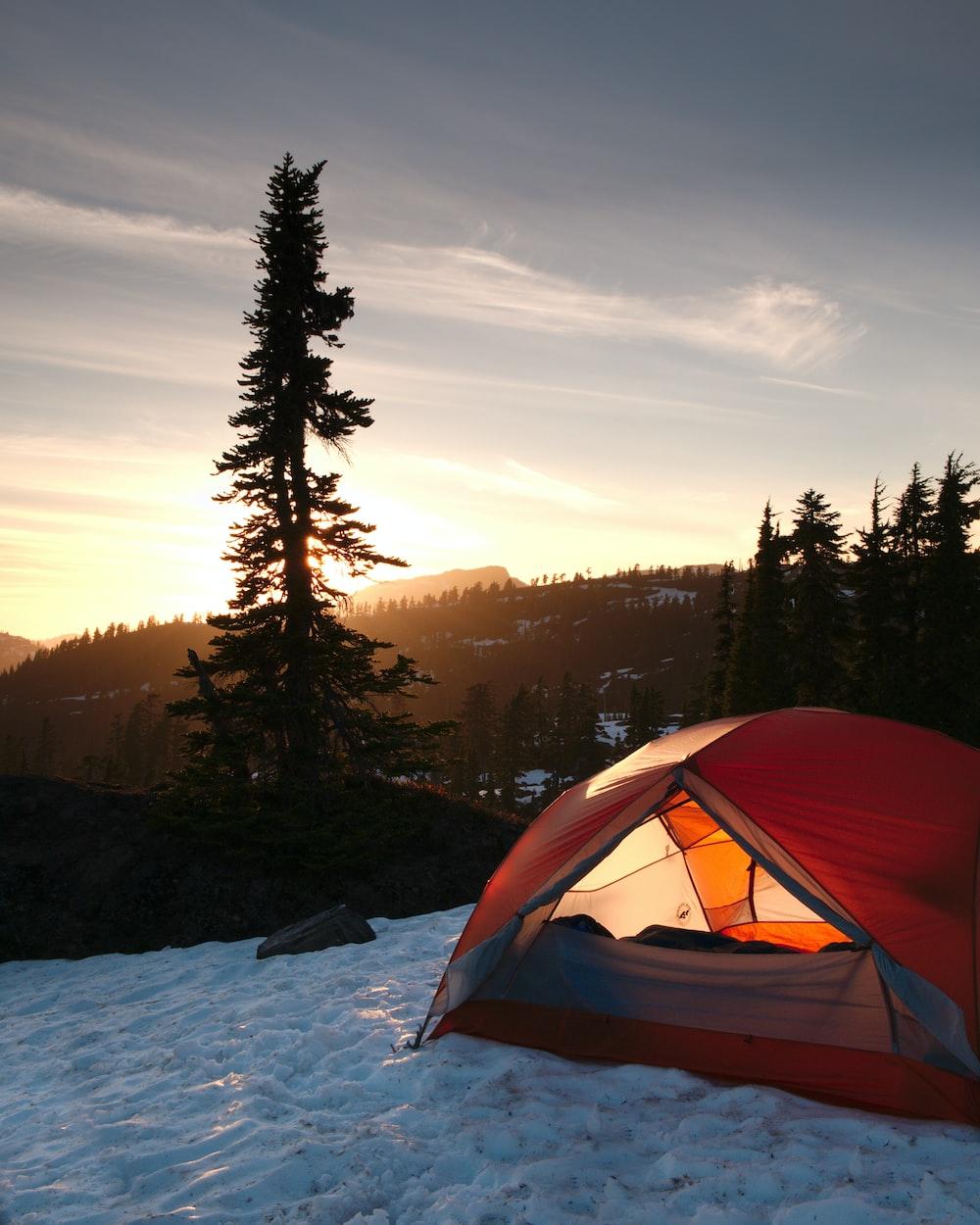 orange dome tent near trees during sunrise
